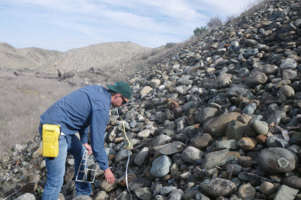 Using Wolman pebble count