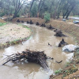 Arcade Creek during a flood event, shortly after construction in 2014.